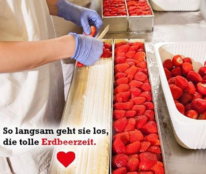 Langsam startet die Erdbeerzeit